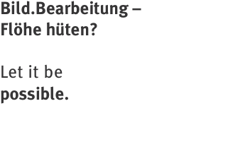 Bild.Bearbeitung –  Flöhe hüten?   Let it be  possible.